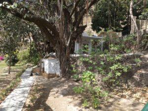 Kakrighat-ashram-4